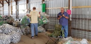Lions sorting cans.